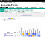 The dementia profile